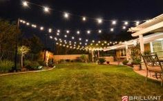 Backyard Lights backyard wedding reception   amber uplights & market lights