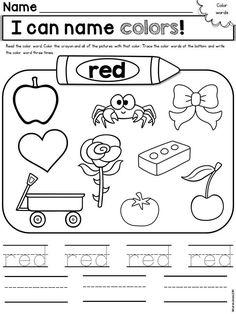 A Color of His Own Kindergarten Literature Unit Printables