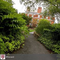 #Harvard -How do you make a great first impression?  #Job #VideoResume #VideoCV #jobs #jobseekers #careerservices #career #students #fraternity #sorority #travel #application #HumanResources #HRManager #vets #Veterans #CareerSummit #studyabroad #volunteerabroad #teachabroad #TEFL #LawSchool #GradSchool #abroad #ViewYouGlobal viewyouglobal.com ViewYou.com #markethunt MarketHunt.co.uk bit.ly/viewyoupaper #HigherEd #harvardu @harvard