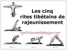 5 Tibetan rites to do every day to stay young amp energetic Spirit Metaphysical Spirituality Yoga Gym, My Yoga, Yoga Fitness, Health Fitness, Brain Gym, Tai Chi, Five Tibetan Rites, Citations Yoga, Relaxing Yoga