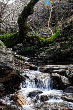 Aris river, Ikaria island, Greece Greek Islands, Greece, Waterfall, Hiking, River, Outdoor, Beautiful, Vacation, Walks
