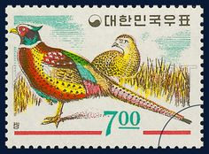 POSTAGE STAMP OF FAUNA, pheasant, Bird, white, red, yellow, 1966 03 15, 동물시리즈, 1966년 03월 15일, 495, postage 우표