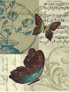 brown, blue and green butterflies