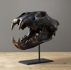 African Lion Skull in Cast Resin