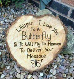 Every butterfly I see, I'm going to do this, for you, my sweet sister, Shannon♡