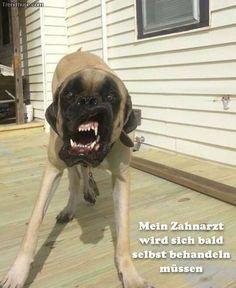 funpot: Zahnarzt.jpg von Funny53