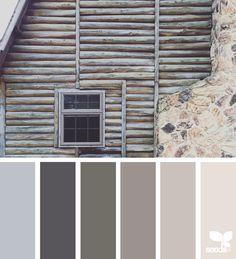 color dwell | design seeds | Bloglovin'