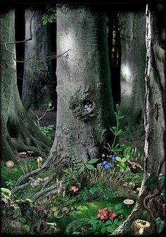 Photosketch #16, Ruud Van Empel