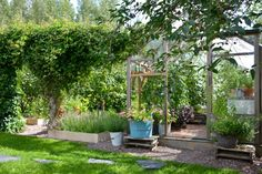 Pool Plants, Garden Plants, Dream Garden, Home And Garden, Square Foot Gardening, Backyard Farming, Vegetable Garden Design, Garden Structures, Urban Farming