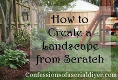 How to create a landscape you'll love!