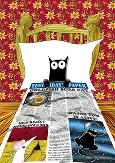 Black cat in bed  by Andrew  Hitchen