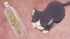 Gato Anime, Anime Cat, Anime Screenshots, Willow Tree, Cat Names, Roommate, Manga, Anime Shows, Anime Style