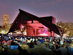 Miller Outdoor Theater and Hippie Hill, Hermann Park, free concerts and plays all summer including broadway plays too!