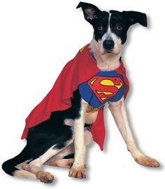 Superman Hundekostüm L -Hundekostüme-Tierkostüme-Superman | horror-shop.com  #Superman #Superhero