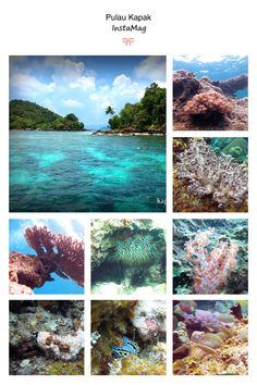 Kapak island @Karimata Island