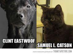 Great actors as animals…