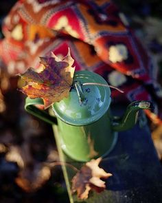 #allthebeautifulthings #autumn #coffeepot #mapleleaf #countryside #countryliving #cozyautumn