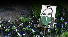 guerrilla gardening - Cerca con Google