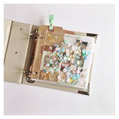 First half minialbum by Annik@waagnes.no at @studio_calico   Love this large confetti pocket, so want to do this!