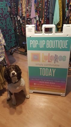 Even Tempo wants to come to my pop-ups! We have so much fun! Traveling all around Wisconsin and Illinois to help you earn free Lularoe! :)