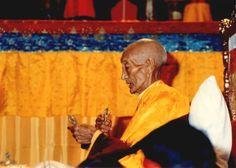 Luminous Mind: The Way of the Buddha Tibetan Buddhism, The Day Will Come, Writing A Book, The Book, Supernatural, Buddha, Spirituality, Mindfulness, Wander