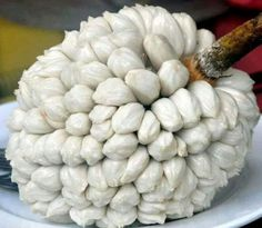 Marang fruta. originaria de Borneo, Palawan y Mindanao.