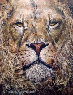 "Wildlife Art ""Forgotten Majesty"": Realistic Acrylic painting of a lion portrait. By Dominique Wilkins. Big Cats Art, Cat Art, Wildlife Paintings, Wildlife Art, Survival Shop, Dominique Wilkins, Figurative Art, Pet Birds, Animal Illustrations"