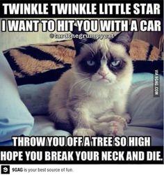 Just Grumpy Cat Singing !