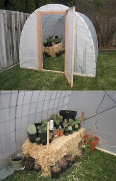 DIY greenhouse ~ PVC, cattle panels, scaffold sheeting, straw. Also, since the wind Neeevvveeer blows in Wyoming, some way to anchor it like cinder blocks would also be good.
