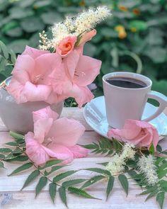 Coffee Love, Coffee Cups, Good Morning Coffee, Plants, Healthy Food, Lady, Flower Arrangements, Bonito, Flowers
