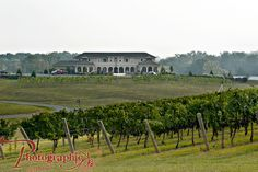 Crosskeys Vineyard, Mt. Crawford, VA.