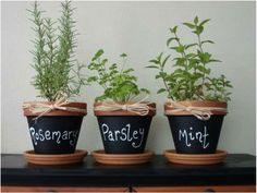 Chalk paint herbs pot