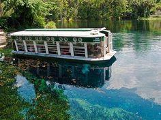 Silver Springs FL, glass bottom boats