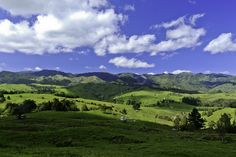 neuseeland nordinsel landschaft im Neuseeland Reiseführer http://www.abenteurer.net/3882-neuseeland-reisefuehrer/