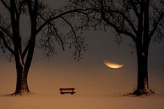 The moon as you've never seen it before: 40 romantic, amazing and inspiring…