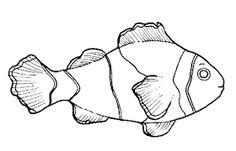 Risultati immagini per disegno pesci stilizzati