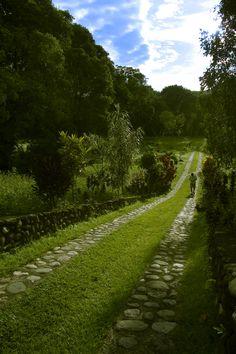 Largos caminos que conducen a paisajes de extensas sabanas, destacan en el estado Barinas en Venezuela.