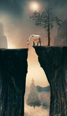 Horse on the edge of a cliff smelling flower. Horse art, painting idea.