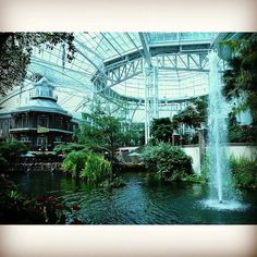 Axis Consultants Group, Inc. is preparing for our Annual National Conference, which will be held at the beautiful Gaylord Opryland Resort & Convention Center in Nashville, Tennessee next week! It's a great opportunity for our team to network with the best of the best in our industry, learn some new leadership skills, and meet with our clients.  Check out all recent & upcoming events on our website! http://axisjax.com/events/