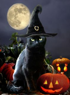 Painted art reproduction of Halloween cat, via Etsy.