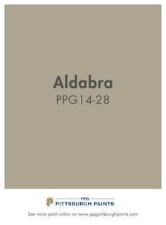 Aldabra PPG14-28 from PPG Pittsburgh Paints.  This beige color incorporates a lot more gray for a very modern, cool, sleeker look. Beige colors with a whisper of gray in them soften a room's backdrop and make it easy to coordinate with pillows and artwork to add pops of color.