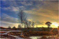 Roode beek Brunssummerheide > Een prachtig gebied om te wandelen!