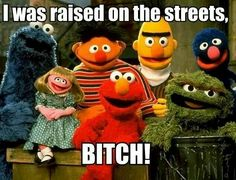 I was raised on the streets, B*TCH...Sesame Street
