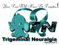 TN (Trigeminal Neuralgia) elephant