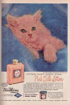 Pink kitten «»~