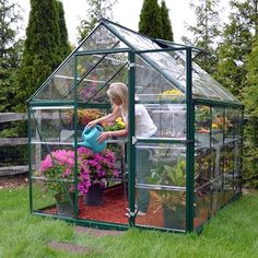 Palram Harmony 6 x 8 Green Greenhouse & Clear Polycarbonate & Aluminium with Base