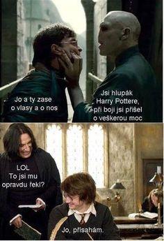 Severus, Harry And Voldemort Harry Potter Texts, Harry Potter Magic, Good Jokes, Funny Jokes, Harry Otter, Weird Words, Voldemort, Man Humor, Funny People