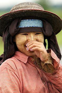 Mujeres trabajando en los campos de arroz. Myanmar