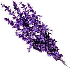 Heart notes: lavender