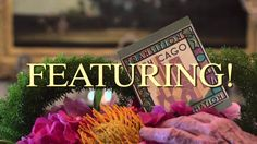 """Join AIFD in Chicago July 2014 for the 2014 AIFD Symposium """"Transition Transformation. Happy Moments, Real Beauty, Teaser, Beautiful Outfits, Floral, True Beauty, Flowers, Flower"""